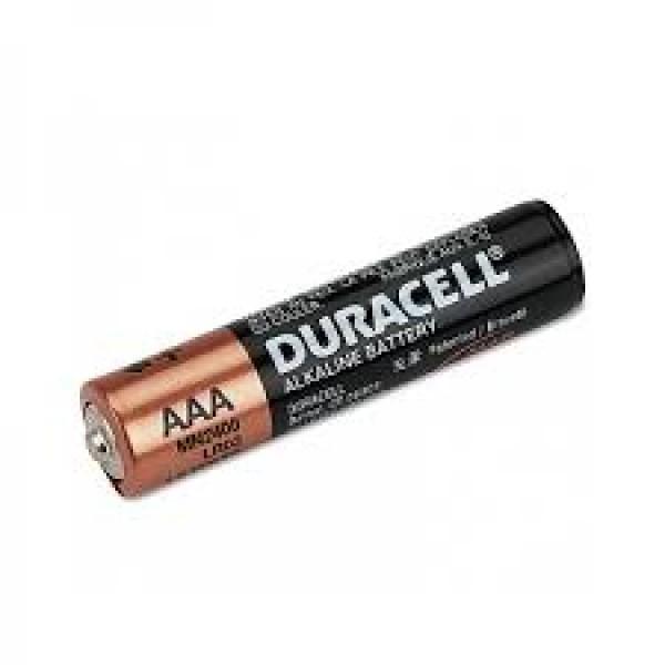 2400 MINI PILE AAA Duracell BX1